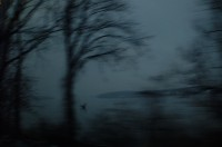Hudson River 13